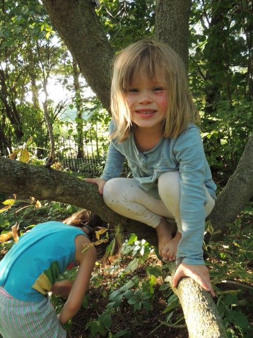 Clara in tree
