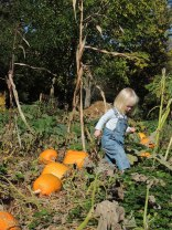 Jane in the pumpkin patch