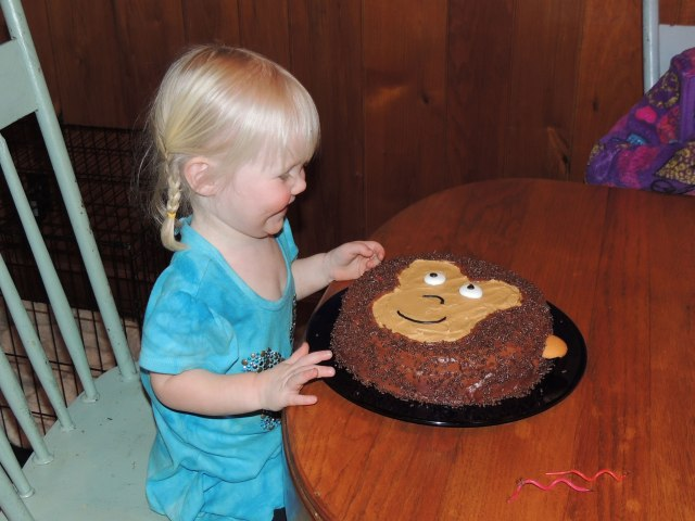 Jane 2nd birthday with monkey cake