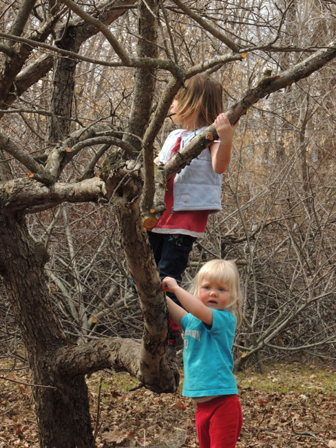 Clara and Jane climbing tree