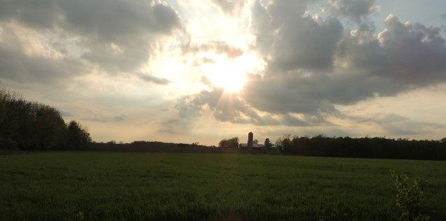 Rick and Sue's Farm