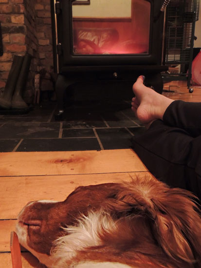 Tired dog, warm toes and a hot fire!