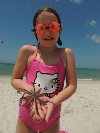 Ivy and a sea star