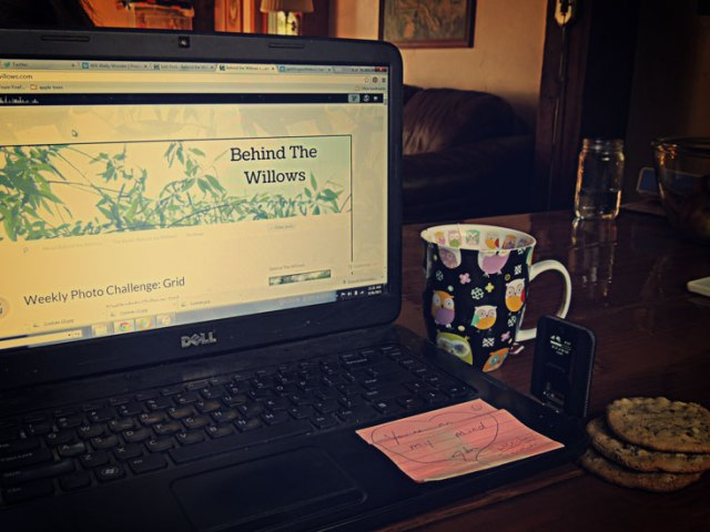blogging, tea, cookies