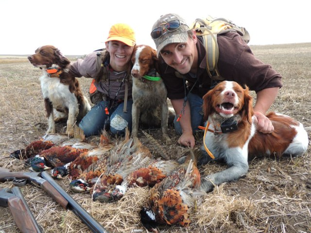 One field, three awesome dogs and a limit of pheasants for everyone including my mom the picture taker.