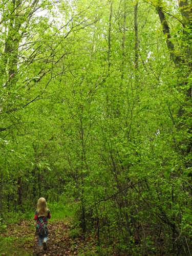 Jane walking in green woods
