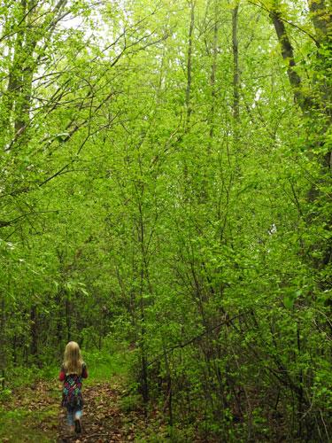 Jane walking in green woods