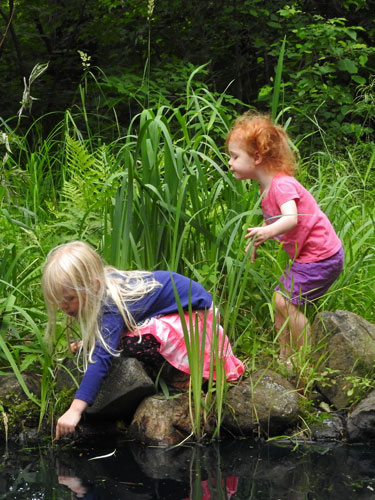 Jane and Natalie catching frogs