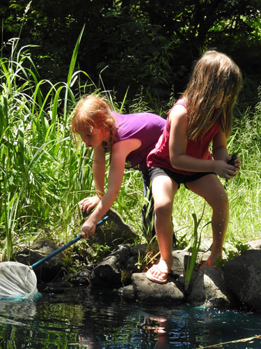 Clara and Gwen catching frogs