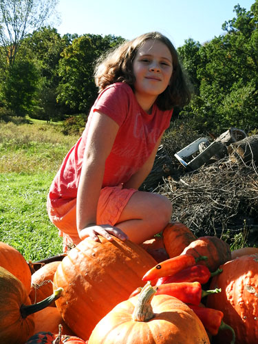 Ivy on pumpkins