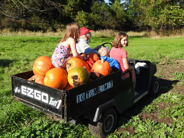 the pumpkin mobile