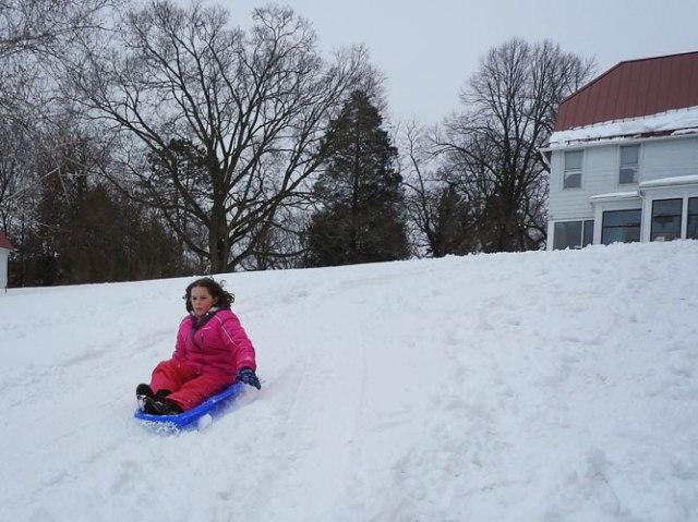 Ivy sledding
