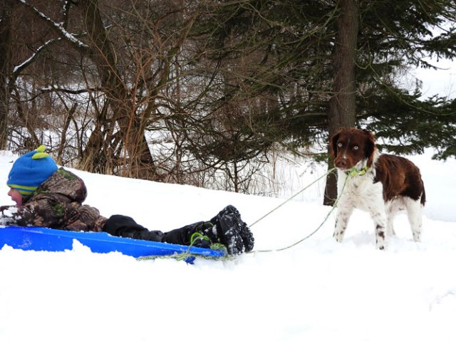 Jonas and Pete sledding