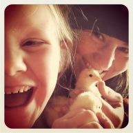 Baby chicks!!!